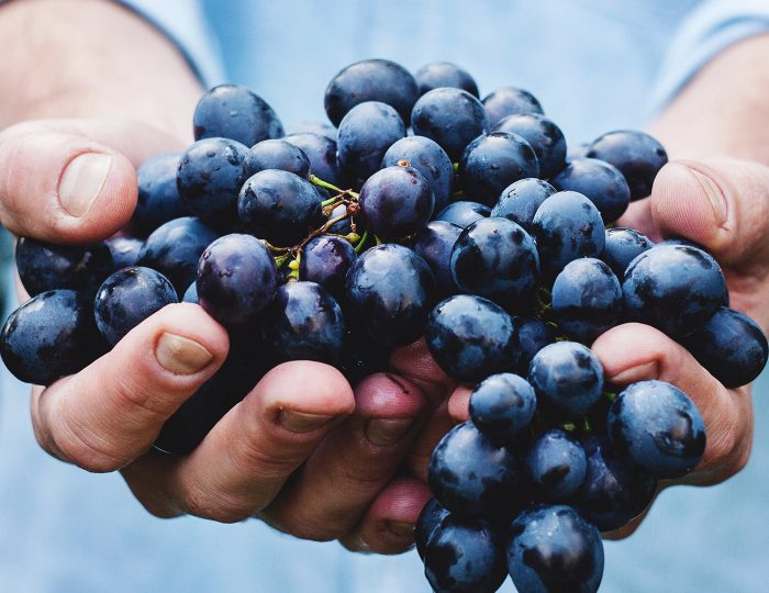 khagahte – (part – 1) KHAGAHTE – (PART – 1) WL Fruitfulness 700x540 1  Home New WL Fruitfulness 700x540 1